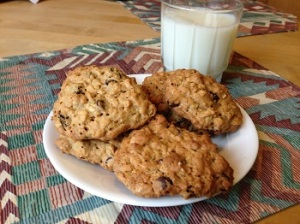 Trailside Oatmeal Cookies